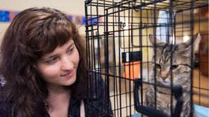 A woman looks at a cat in a cage.