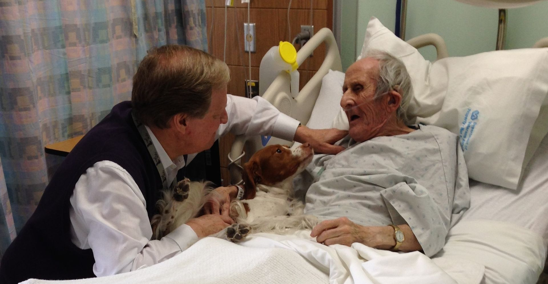 David Frei and a therapy dog comfort a hospital patient.