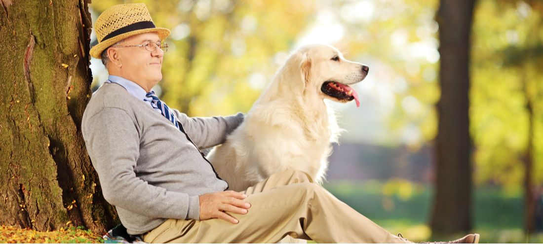 A senior and his Labrador Retriever.