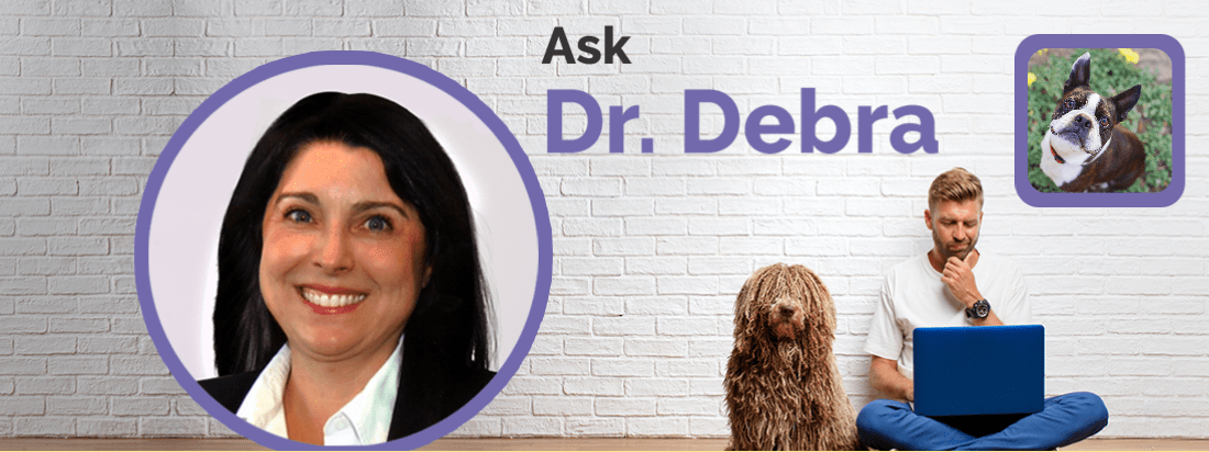 Dr. Debra Primovic answers questions about soft palate surgery.