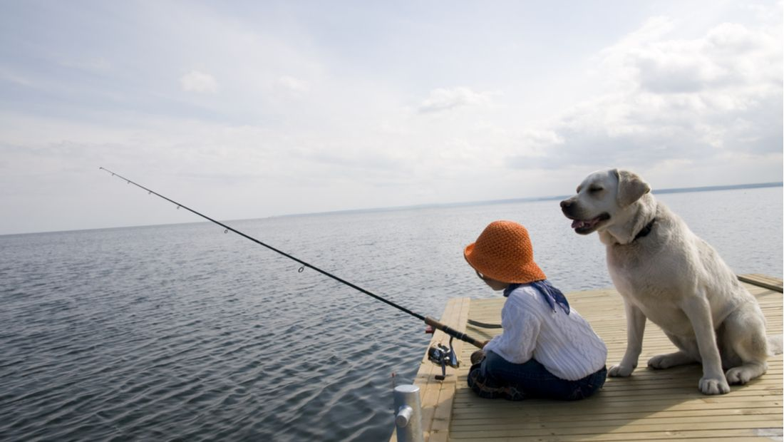 The Dangers of Fishing with Your Dog