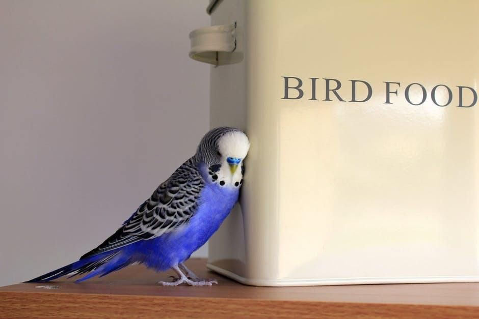 A blue and grey bird leans against a box of feed.