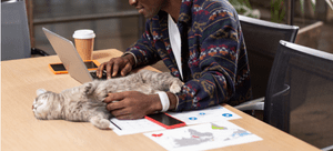 An owner pets his cat while working from home.