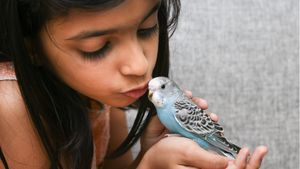 Microchipping Your Bird