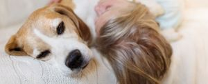 how to care for blind and deaf dogs
